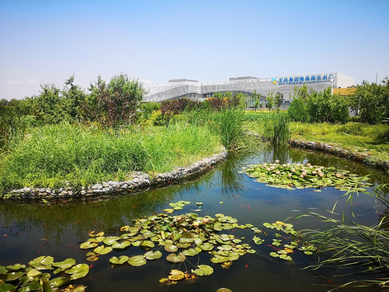 北京槐房空气悬浮项目